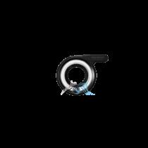 lg1 olympus photodenfert