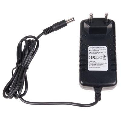 Chargeur intelligent pour les batteries DS161, DS160, DS125 NiMH