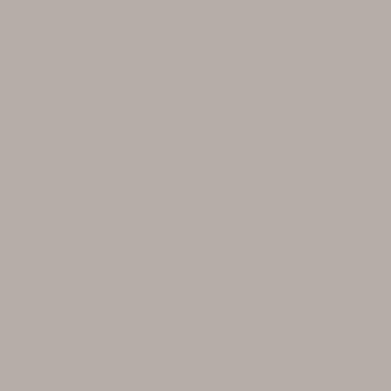 Fond papier gris Pursuit Gray - 127 BD