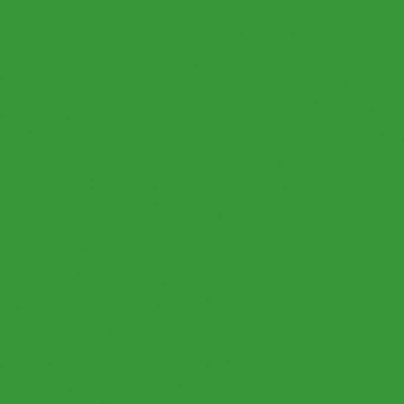 Fond papier vert VERI GREEN - 132 BD