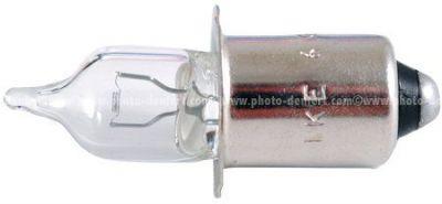 Ikelite ampoule DS 125 et PCa