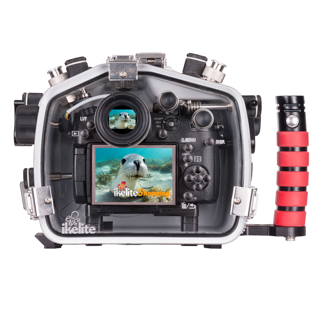 Ikelite caisson étanche pour Panasonic GH5/GH5-S