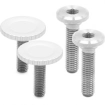 Peak design capture V3 silver + Plateau standard