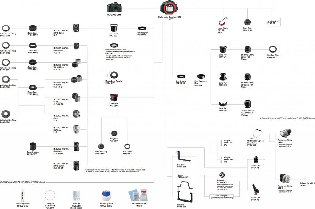 systemchart PTEP11 PHOTODENFERT