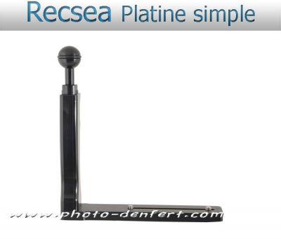 Recsea platine simple poignée