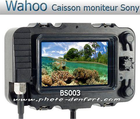 Wahoo Caisson pour moniteur Sony CLM-V55